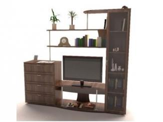 Стенка в гостиную Александрия 1 - Мебельная фабрика «Мебельградъ»