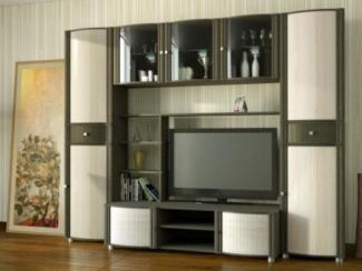Гостиная стенка Аккорд модерн 9 - Мебельная фабрика «Славянская мебельная компания (СМК)»