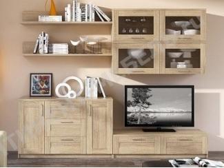 Гостиная с полками Композиция 1 - Мебельная фабрика «Континент-мебель»