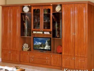 Гостиная стенка Камелия - Мебельная фабрика «Союз-мебель»