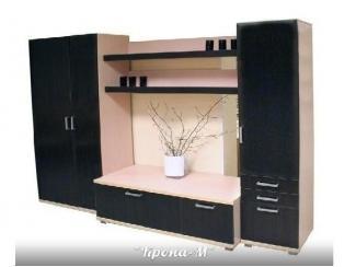 Тумба под ТВ  ТВ-2 - Мебельная фабрика «Крона-М»