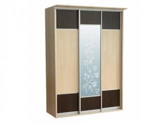 Шкаф-купе «Атлант 3.1» - Мебельная фабрика «Росвега»