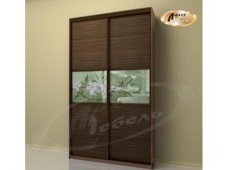 Шкаф - купе «Японская вишня» - Мебельная фабрика «Ладос-мебель»