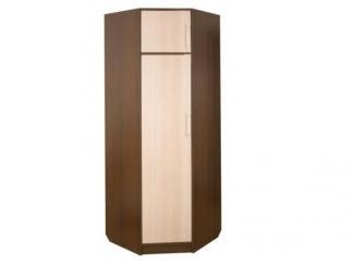 Угловой одностворчатый шкаф София секция 5 - Мебельная фабрика «Салават стиль»
