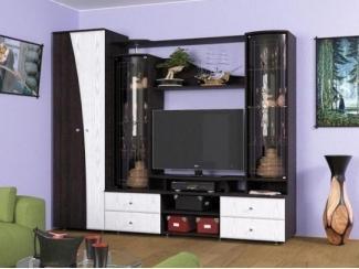 Модель гостиной о шкафом  - Мебельная фабрика «Северная Двина»