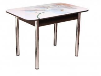 Стол обеденный фотопечать - Мебельная фабрика «Владикор»