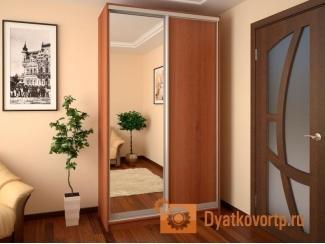 Шкаф-купе 2-х дверный №1 - Мебельная фабрика «Дятьковское РТП-1»