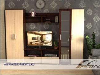 Гостиная со шкафом Бюджет 6 - Мебельная фабрика «Престиж»