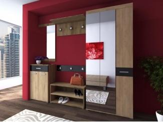 Большая прихожая Альтаир 6 - Мебельная фабрика «Вега»