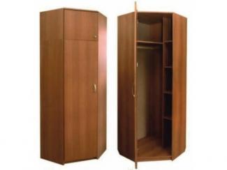Шкаф 7006 - Мебельная фабрика «Мебель НН»