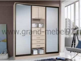 Шкаф-купе 018 - Мебельная фабрика «Гранд Мебель 97»