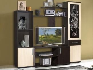 Гостиная стенка Флокс 5 - Мебельная фабрика «Мебель-маркет»