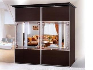 Шкаф-купе 2 створки Дельта ТУ - Мебельная фабрика «Триана»