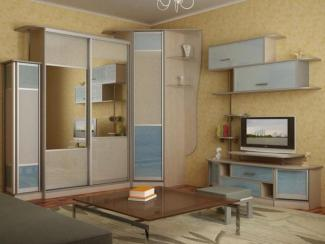 Шкаф - купе Модель 206 - Мебельная фабрика «Паганель»