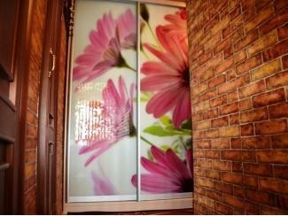 Шкаф-купе с фотопечатью на стекле Велес  - Мебельная фабрика «Анкор»