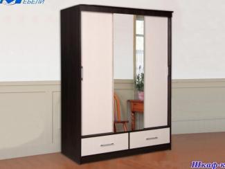 Шкаф-купе  - Мебельная фабрика «Мир Мебели»