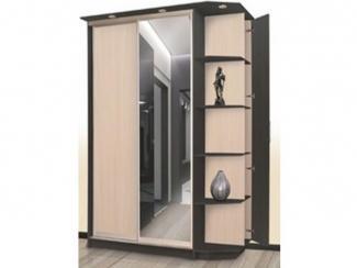 Шкаф-купе 9 - Мебельная фабрика «Северная Двина»