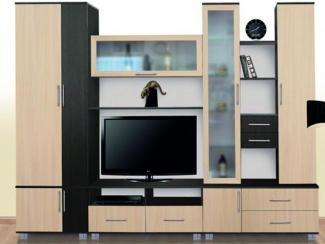 Гостиная стенка Гамма-6 - Мебельная фабрика «Северная Двина»
