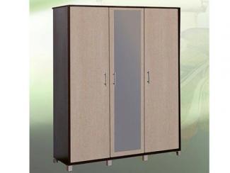Шкаф распашной 3 - Мебельная фабрика «Кредо»