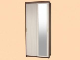 Шкаф-купе Эконом 2-х дверный