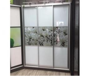 Шкаф-купе - Мебельная фабрика «Кипарис»