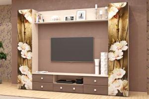 Гостиная-5 - Мебельная фабрика «МЭК»