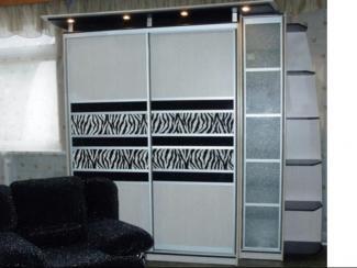 Шкаф - купе «Зебра» - Мебельная фабрика «Евромебель»