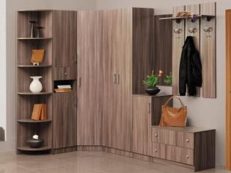 Прихожая угловая «Эгида 1» - Мебельная фабрика «Элегия»