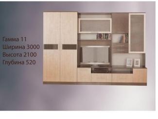 Гостиная Гамма 11 - Мебельная фабрика «Алекс-мебель»