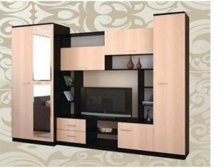 Гостиная 81 - Мебельная фабрика «Алекс-мебель»