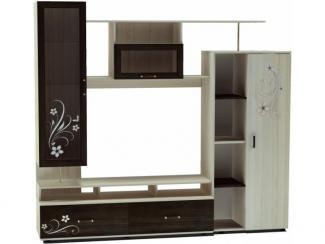 Гостиная стенка ТВА 15  - Мебельная фабрика «Премиум»