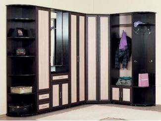 Модульная прихожая Визит 9 - Мебельная фабрика «Лига Плюс»