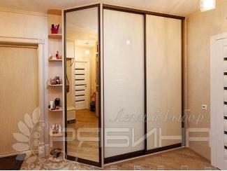 Комбинированный шкаф-купе Амстердам  - Мебельная фабрика «Рябина», г. Москва