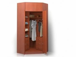 Шкаф распашной угловой ALISA-14 - Мебельная фабрика «Баронс»