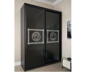 Шкаф-купе 2-х дверный Премиум 11 - Мебельная фабрика «Мэри-Мебель»