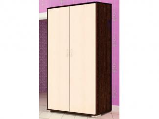 Шкаф 2-ух дверный для одежды
