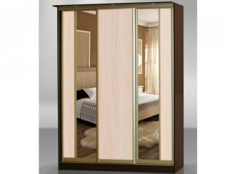 Шкаф-купе Лагуна-5 - Мебельная фабрика «МебельШик»