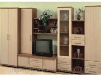 Гостиная стенка 8004 - Мебельная фабрика «Мебель НН»