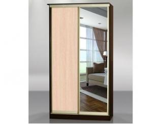 Шкаф-купе 2 створки с зеркалом №4