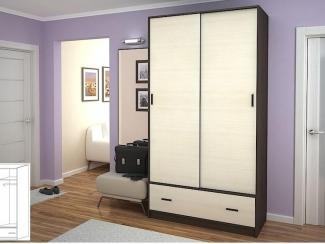 Шкаф-купе с ящиком Бася - Мебельная фабрика «ВиАл»