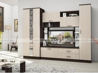 Гостиная Поло 7 - Мебельная фабрика «Астрид-Мебель (Циркон)»