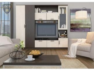 Гостиная Дения 3 - Мебельная фабрика «ДСВ-Мебель»