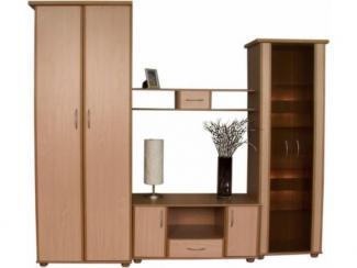 Гостиная Медео 1М - Мебельная фабрика «Пинскдрев»