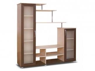 Удобная стенка под телевизор ТВ4 - Мебельная фабрика «Маэстро», г. Волгодонск