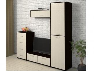 Стенка для гостиной Лазурит-3  - Мебельная фабрика «Фокус»