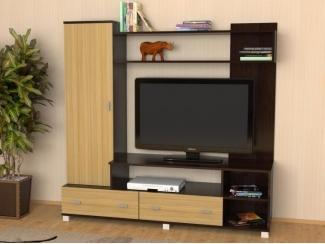 Министенка  Венге дуб медовый  - Мебельная фабрика «Феникс-мебель»
