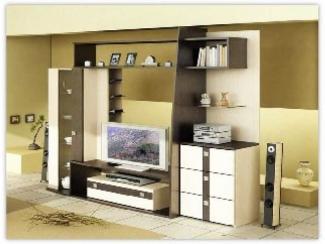 Гостиная стенка Сити  - Изготовление мебели на заказ «Орион»