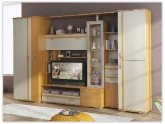 Гостиная стенка  Э- 5 - Изготовление мебели на заказ «Орион»