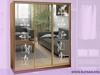 Шкаф-купе - Мебельная фабрика «Buena»