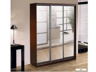 Шкаф - купе 3-х дверный  - Мебельная фабрика «Амира»
